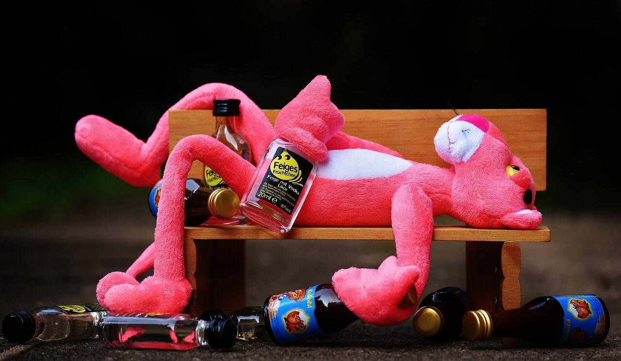 【検証】酒好き30歳女が2週間の禁酒チャレンジスタート【1日目】