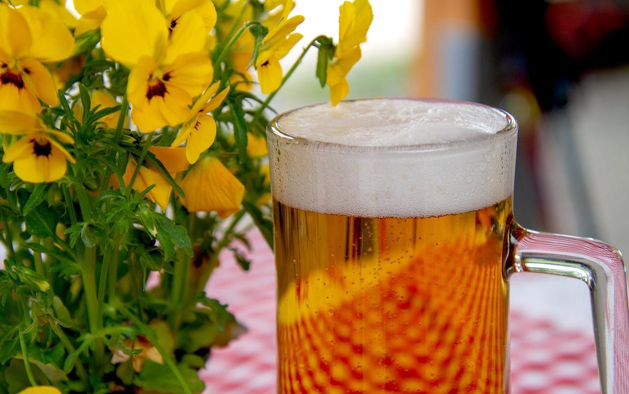 【検証】30歳酒好き女の禁酒〜ノンアルコールビールを極める編〜【5日目】